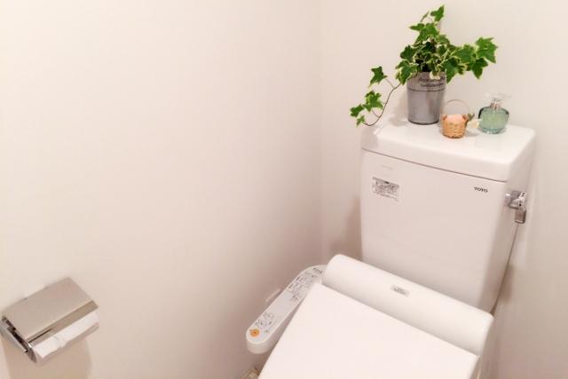 トイレを和式から洋式へ変える